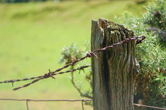 Barbed wire with post Stock Photo