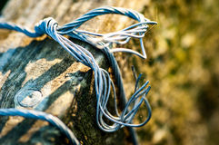Barbed wire on a post Stock Photography