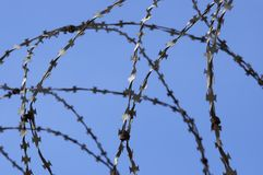 Barbed wire in prison. Barbed wire,view from prison Royalty Free Stock Photography
