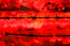 Barbed wire  on red background Royalty Free Stock Images