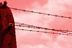 Barbed wire and the red background Royalty Free Stock Photos