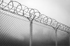 Black And White Barbed Wire Background
