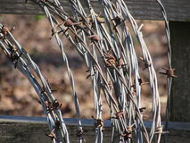 Barbed Wire Roll with Wood Fence Background Royalty Free Stock Photos