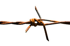 Barbed wire with rust Stock Image