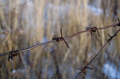 Barbed wire. Rusty barbed wire is bent in the vicinity Stock Photos