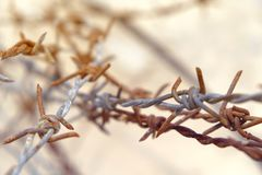 Barbed wire is rusty. royalty free stock image