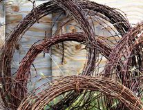 Barbed wire. Rusty reddish brown barbed wire rolled up leaning against an old fence Royalty Free Stock Images