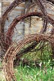 Barbed wire. Rusty reddish brown barbed wire rolled up leaning against an old fence Royalty Free Stock Photos