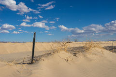 Barbed Wire in Sand Dunes Royalty Free Stock Photos