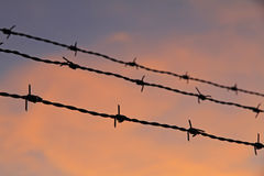 Barbed wire. Shadow of a barbed wire fence in front of an evening-sky Stock Photography