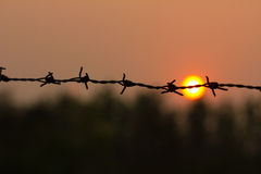 Barbed wire silhouette on sunset sky Stock Image