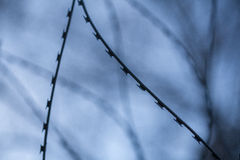 Barbed wire. On sky background Royalty Free Stock Photos