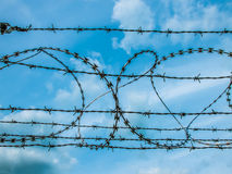 Barbed wire on the sky Stock Photo