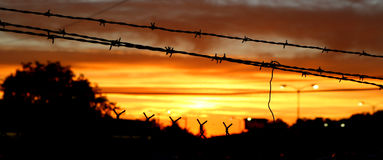 Barbed Wire Sky Fire. Silhouette of barbed wire against a sunset sky Stock Photo