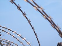 Barbed wire with sky Stock Photography