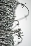 Barbed wire spirals with selective focus. For blur effects stock image