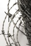 Barbed wire spirals with selective focus. For blur effects royalty free stock photos