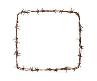 Barbed wire square. Isolated on white background Stock Photography
