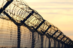 Barbed wire steel wall against the immigrations in europe Royalty Free Stock Photo