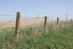Barbed wire stretched on concrete pillars. The fence Royalty Free Stock Photos