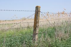 Barbed wire stretched on concrete pillars. The fence Stock Photography
