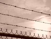 Barbed Wire Sunrise Stock Photos