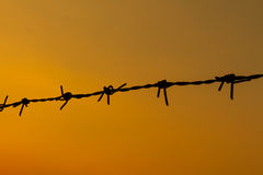 Barbed wire sunset Royalty Free Stock Images