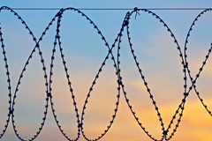 Barbed wire a sunset Royalty Free Stock Photo