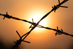 Barbed wire on sunset Royalty Free Stock Photography