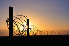 Barbed wire in the sunset Royalty Free Stock Image