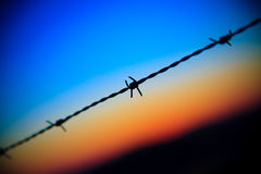 Barbed wire on sunset sky Stock Images