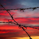 Barbed wire in sunset sky stock images