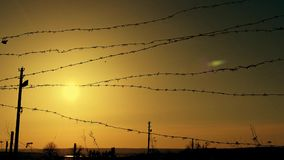 Barbed wire at sunset in the wind stock video footage