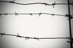 Barbed wire is a symbol of unfreedom, deprivation and concentration camps. Barbed wire is a symbol of unfreedom, deprivation and concentration camps Stock Image