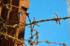 Barbed wire at times reminiscent of concentration camps Royalty Free Stock Images