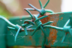 Barbed wire on the top part of a fence Stock Photography