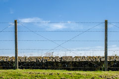 Barbed wire trench of death world war one Royalty Free Stock Photo