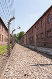 Barbed Wire Walkway. Gravel walk way surrounded by barbed wire at Auschwitz concentration camp, Poland stock photo