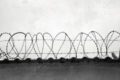 Barbed wire on the wall Stock Photo