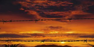 Barbed wire on war sunset. Fire in sky. There are silhouettes of the barbed wires  against the dramatically red colored clouds at the war sunset. The line of Royalty Free Stock Image
