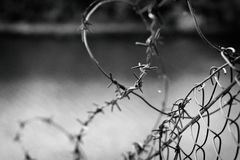 Barbed wire in a web on the background of a river, close up Stock Photo