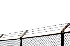 Barbed wire with white background. Chain link fence with barbed wire Stock Image