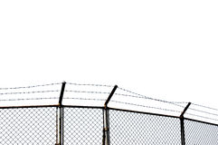 Barbed wire with white background Stock Photos