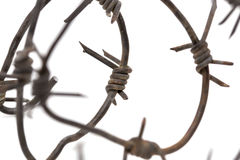 Barbed wire on white background. macro Royalty Free Stock Photos