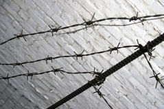 Barbed wire. White wall background blurred. Color photo. Taken in Moscow Royalty Free Stock Photo
