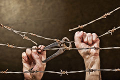 Barbed Wire With Hands Royalty Free Stock Photos