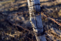 Barbed Wire on Wood Post. Background Royalty Free Stock Photos