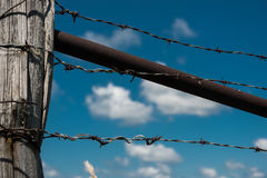 Barbed wire on a wooden fence in the field Stock Images