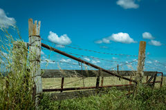 Barbed wire on a wooden fence in the field Stock Photo