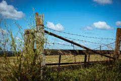 Barbed wire on a wooden fence in the field Stock Photos